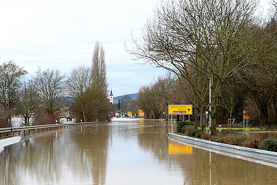 Hochwasser Rheingau